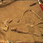LWL-Museum für Archäologie in Herne - Dauerausstellung und Forscherlabor.00_03_57_23.неподвижное изображение001